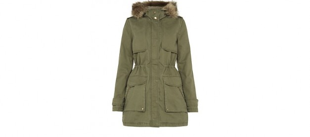 A Coat for Winter