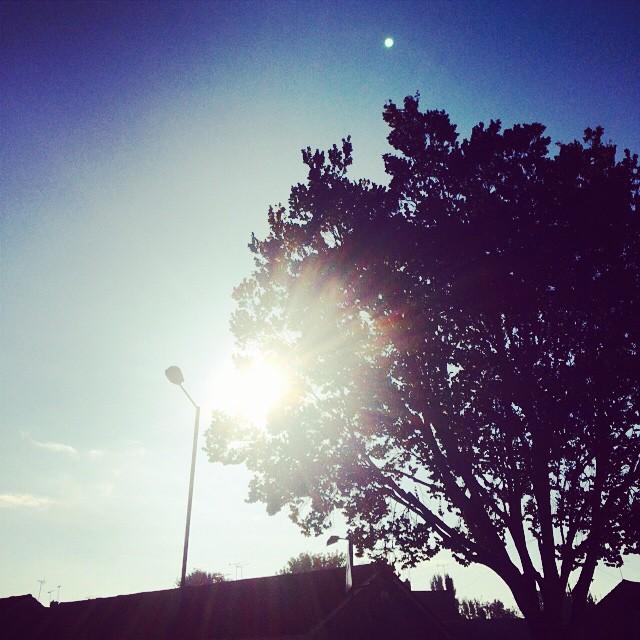 October sun.