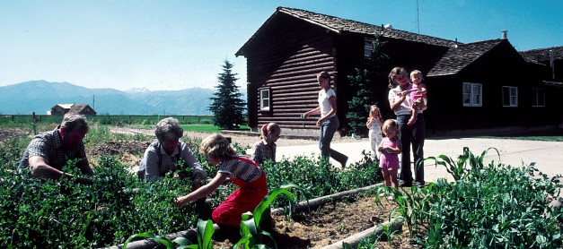How to Create and Grow a Family Garden