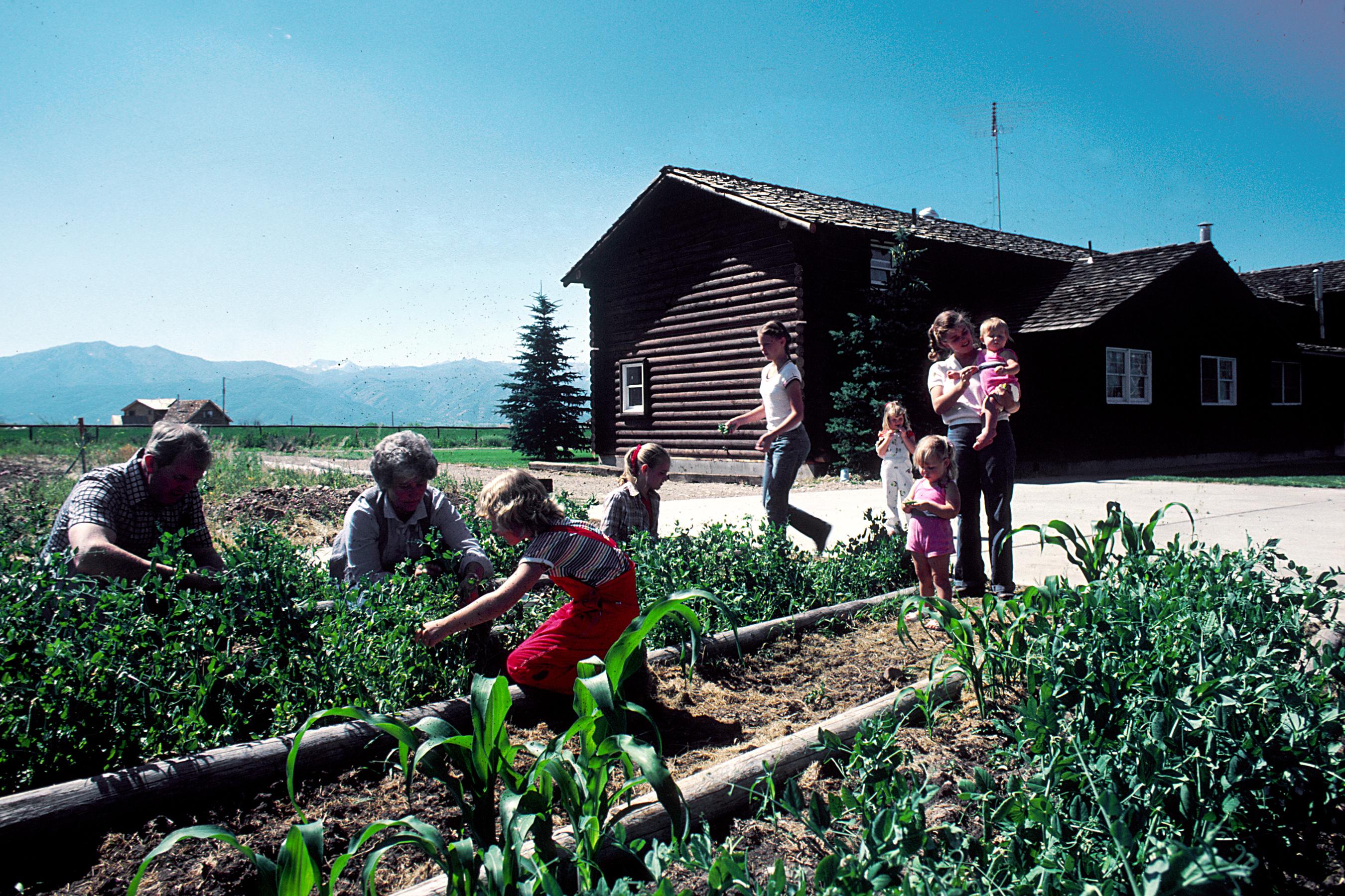 Family_gardening