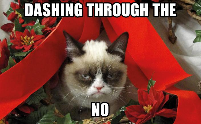 un-christmassy grumpy cat