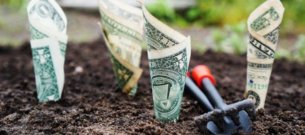 Keep Watering The Money Tree
