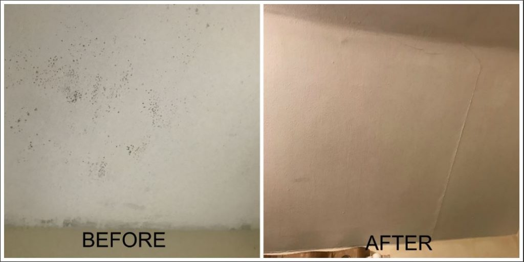Damp Before and After