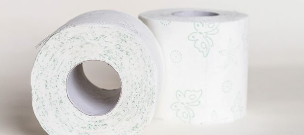 Essential Tips for Potty Training