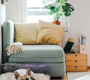 Tips to Refresh your Home at the Start of 2019